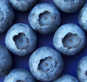 blueberries-by-lisaendavy-via-flicker.jpg