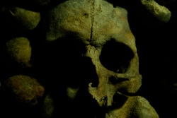in-the-catacombs-by-rbleib-via-flickr.jpg
