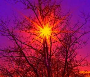 tree-star-of-the-winter-sky-by-rusty-russ1