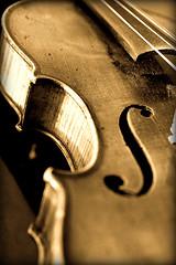 violin-love-by-natalamc