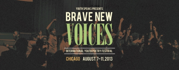 BNV-2013-About